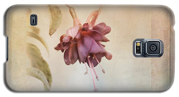 Beauty Fades Softly Framed Galaxy S5 Case by Susan Capuano