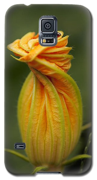 Beauty Galaxy S5 Case by Gouzel -