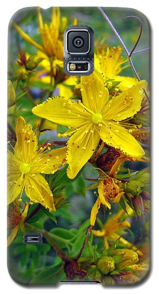 Galaxy S5 Case featuring the photograph Beauty In A Weed by I'ina Van Lawick