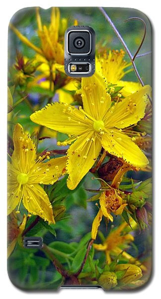 Beauty In A Weed Galaxy S5 Case by I'ina Van Lawick