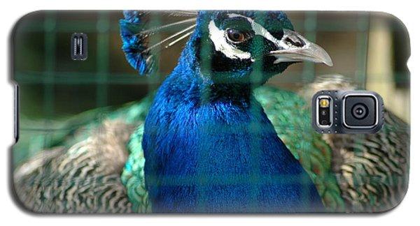 Galaxy S5 Case featuring the photograph Beauty In Captivity by Randi Grace Nilsberg