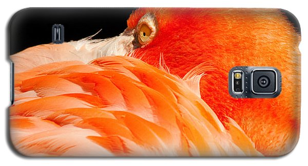 Beauty In Feathers Galaxy S5 Case
