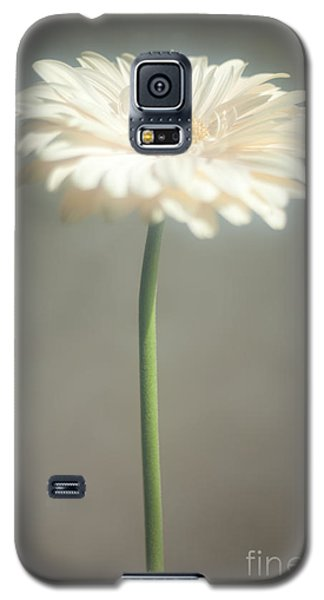 Galaxy S5 Case featuring the photograph Sunbathing by Aiolos Greek Collections