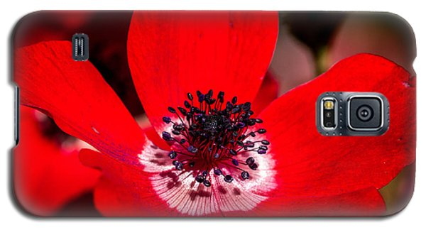 Beauty In Red Galaxy S5 Case
