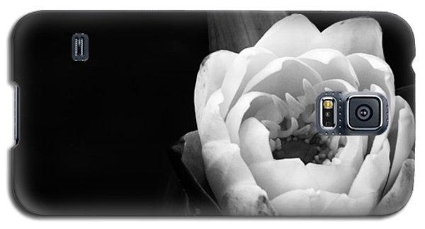Beauty In The Dark Galaxy S5 Case