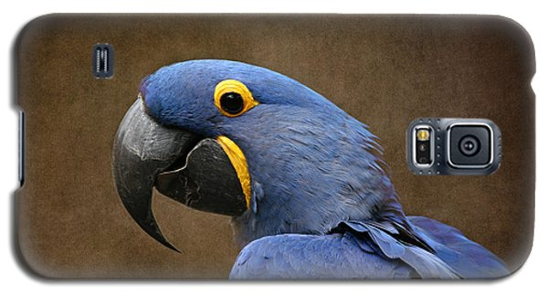 Beauty Is An Enchanted Soul - Hyacinth Macaw - Anodorhynchus Hyacinthinus Galaxy S5 Case