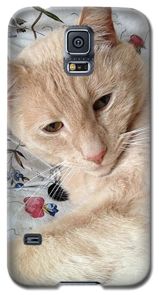 Beauty Galaxy S5 Case by Kim Prowse