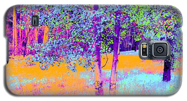 Beauty Of An Aspen Grove Galaxy S5 Case by Ann Johndro-Collins