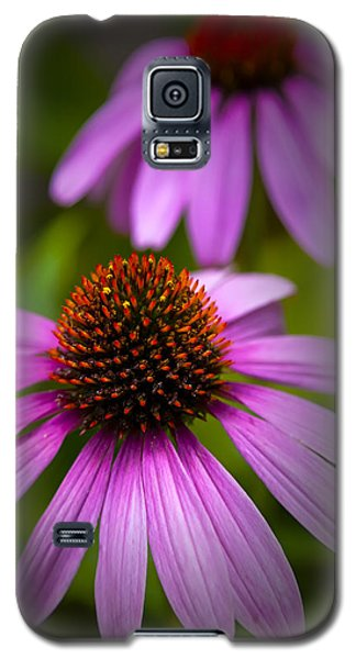 Beauty Of Life Galaxy S5 Case