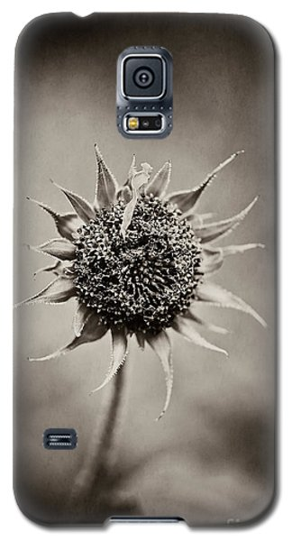 Beauty Of Loneliness Galaxy S5 Case