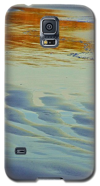 Beauty Of Nature Galaxy S5 Case by Blair Stuart
