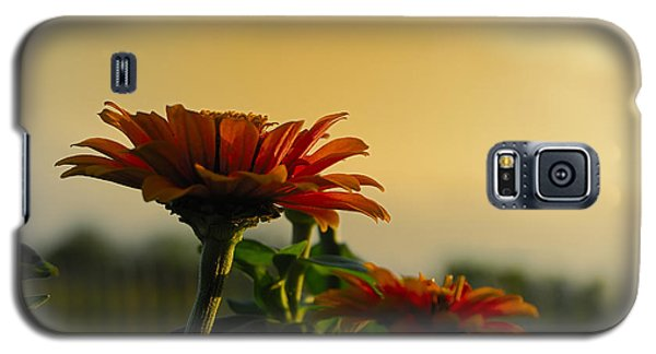 Beauty Of Nature Galaxy S5 Case