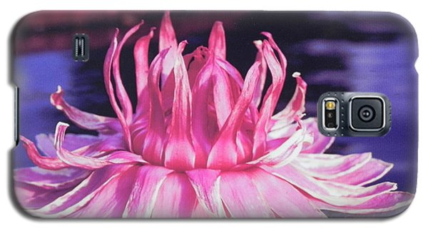 Galaxy S5 Case featuring the photograph Beauty Of Pink At The Ny Botanical Gardens by Chrisann Ellis
