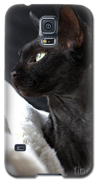 Beauty Of The Rex Cat Galaxy S5 Case