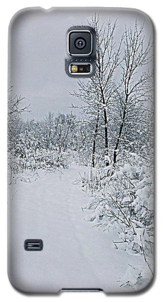 Beauty Of Winter Galaxy S5 Case by Kay Novy