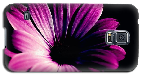Beauty On The Black #2 Galaxy S5 Case