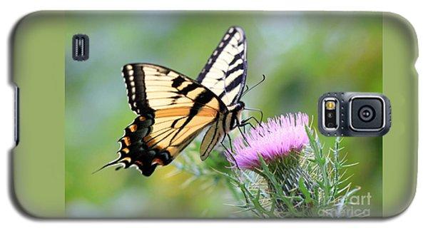 Beauty On Wings Galaxy S5 Case