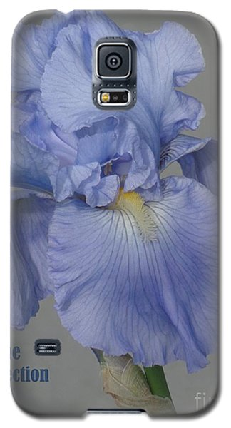 Galaxy S5 Case featuring the photograph Beauty Psalm by Christina Verdgeline