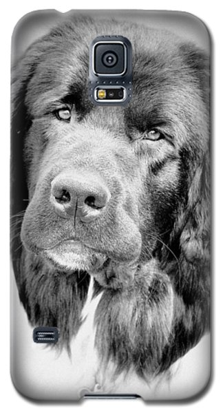Beauty Pup Galaxy S5 Case
