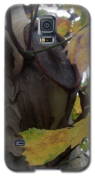 Beauty With Age Galaxy S5 Case