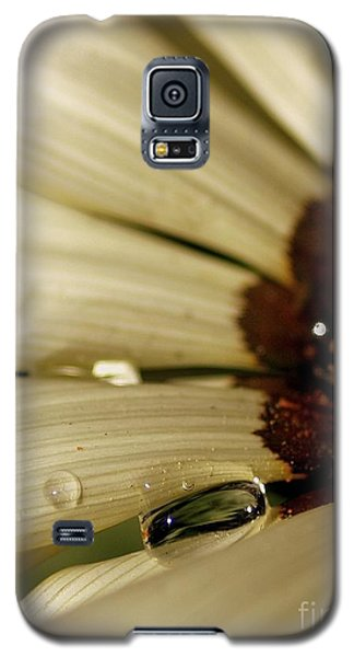 Beauty Within A Rain Drop Galaxy S5 Case
