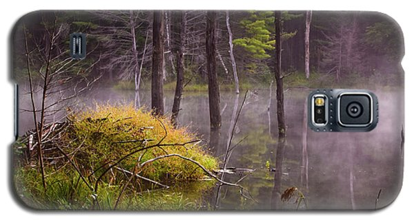 Galaxy S5 Case featuring the photograph Beaver Lodge by Tom Singleton