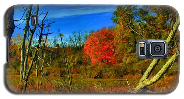 Beaver Marsh In October Galaxy S5 Case by Dennis Lundell