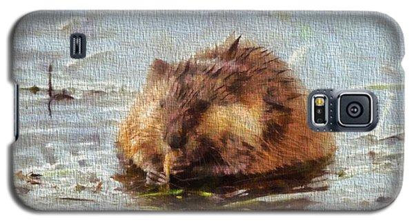 Beaver Portrait On Canvas Galaxy S5 Case