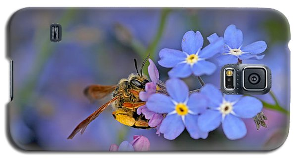 Galaxy S5 Case featuring the photograph Bee And Forget-me-nots by Peggy Collins