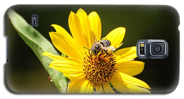 Bee Flower Galaxy S5 Case