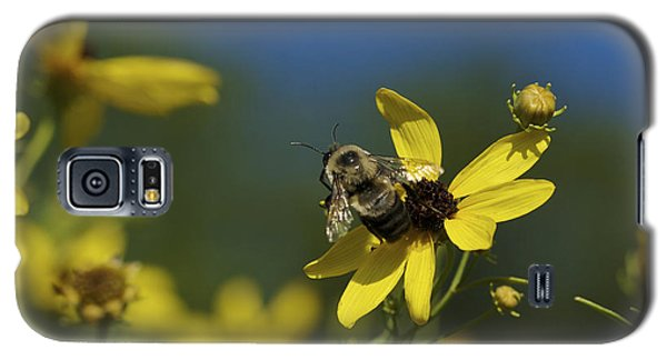 Galaxy S5 Case featuring the photograph Bee Good - Bee On Yellow Wildflowers by Jane Eleanor Nicholas