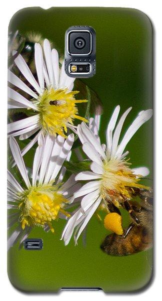 Bee Harvest Galaxy S5 Case