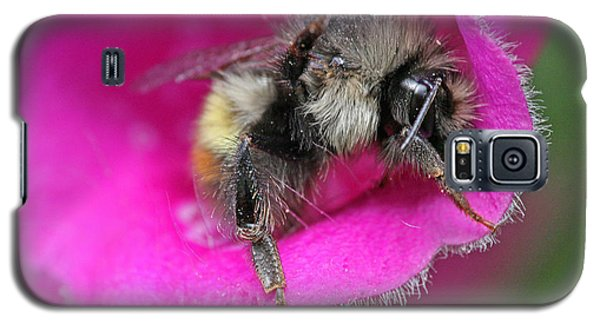 Galaxy S5 Case featuring the photograph Bee In Foxgloves by Peggy Collins