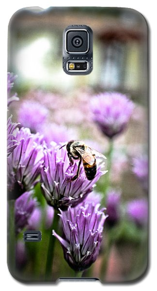Bee In The Chives Galaxy S5 Case by Joel Loftus