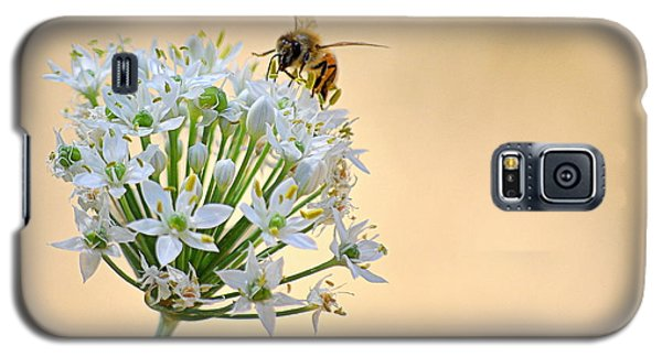 Galaxy S5 Case featuring the photograph Bee In The Garlic Chives by AJ  Schibig