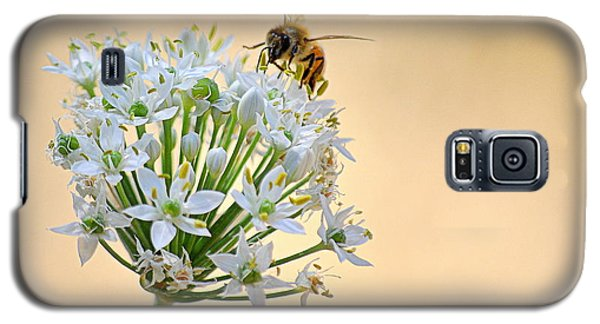 Bee In The Garlic Chives Galaxy S5 Case