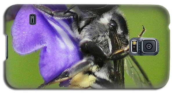 Bee-licious Flower Galaxy S5 Case