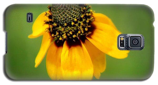 Bee My Coneflower Galaxy S5 Case