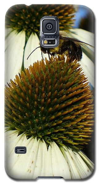 Galaxy S5 Case featuring the photograph Bee On A Cone Flower by Lingfai Leung