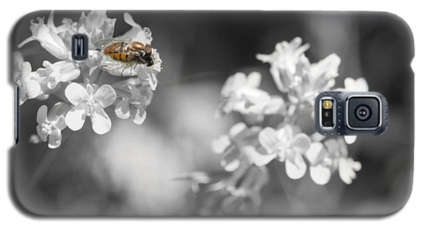 Bee On Black And White Flowers Galaxy S5 Case by Todd Soderstrom