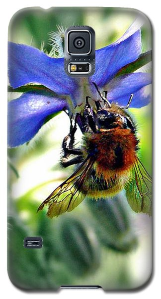 Galaxy S5 Case featuring the photograph Bee On Borage by Morag Bates