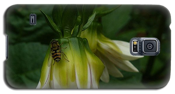 Galaxy S5 Case featuring the photograph Bee On Flower by Jane Ford