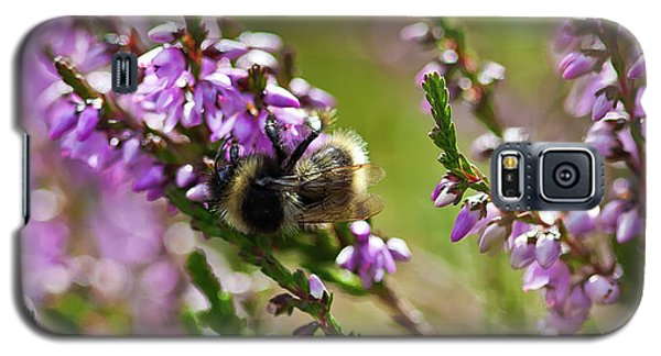 Bee On Heather Galaxy S5 Case