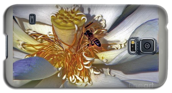 Bee On Lotus Galaxy S5 Case by Savannah Gibbs