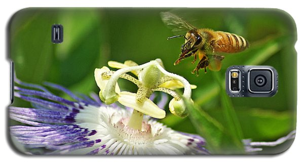 Bee On Passionflower Galaxy S5 Case