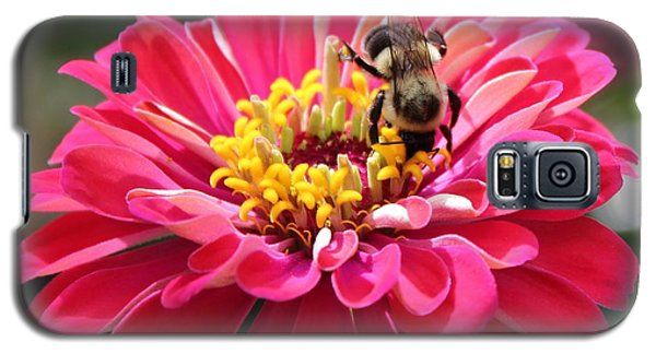 Galaxy S5 Case featuring the photograph Bee On Pink Flower by Cynthia Guinn