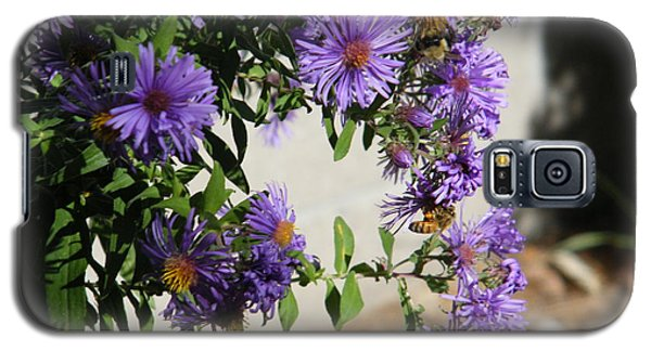 Bee On Purple Galaxy S5 Case