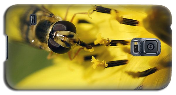 Galaxy S5 Case featuring the photograph Bee On Yellow by Inge Riis McDonald