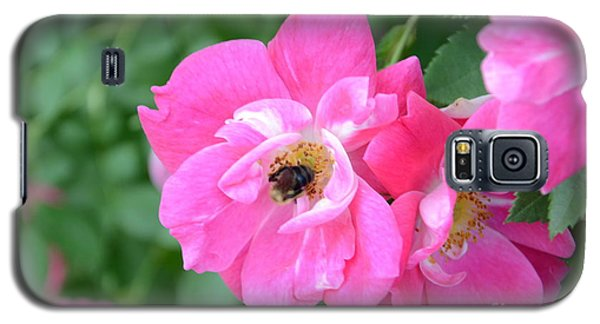 Bee Rosy Galaxy S5 Case