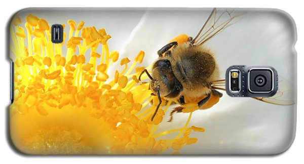 Galaxy S5 Case featuring the photograph Bee-u-tiful by TK Goforth